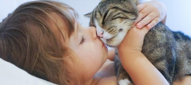 Naminiai gyvūnai – užkrečiamųjų ligų infekcijos šaltinis