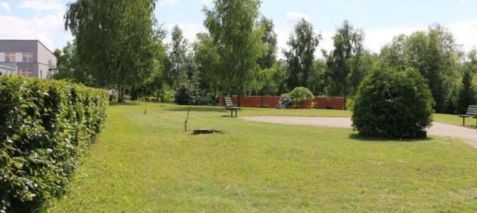 Senelių namuose gyvenantiems senjorams planuojama įrengti sodą