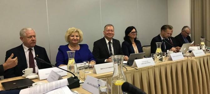 Lietuvos ir Lenkijos tarpvyriausybinės bendradarbiavimo per sieną komisijos posėdyje meras V. Grigaravičius skaitė pranešimą