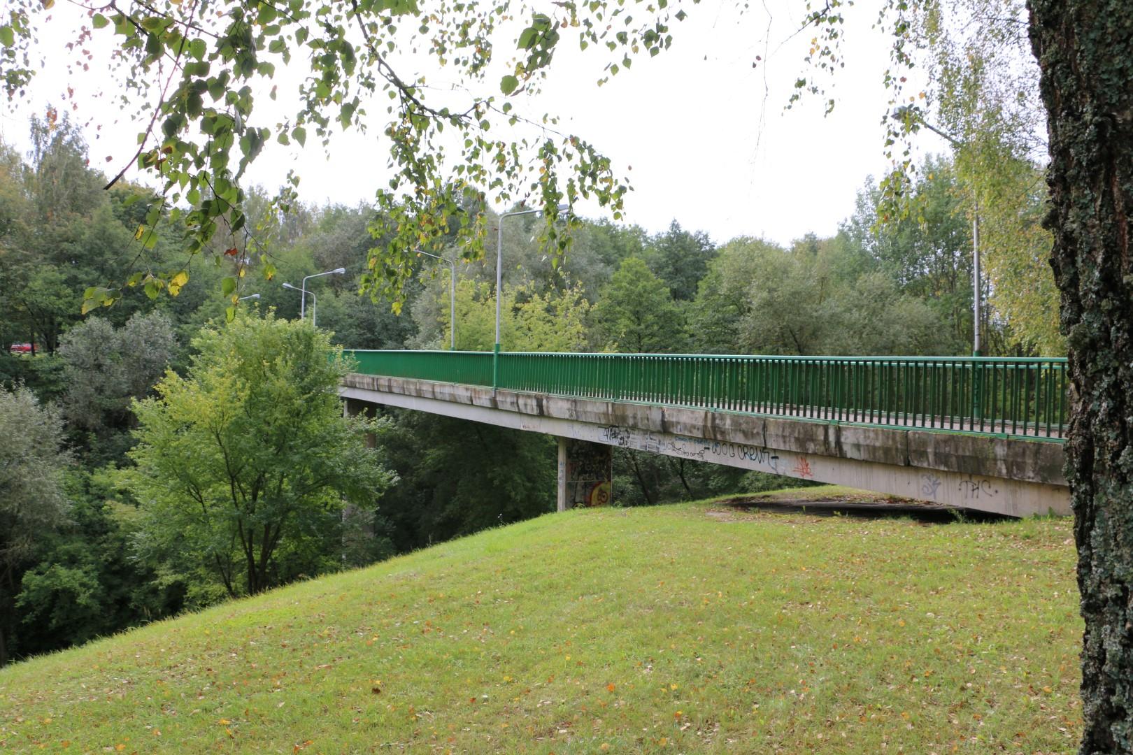 Jaunimo parko tiltas (AMS nuotr.)