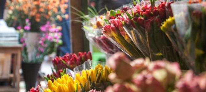 Prekyba gėlėmis – ką būtina žinoti?