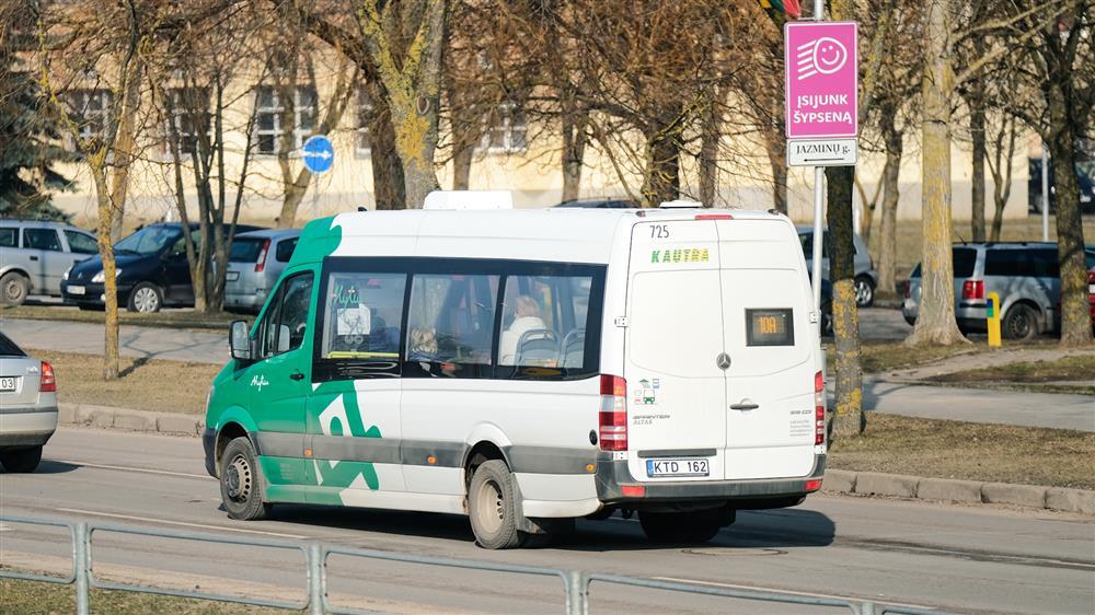 Viesasis transportas (Ams nuotr.)