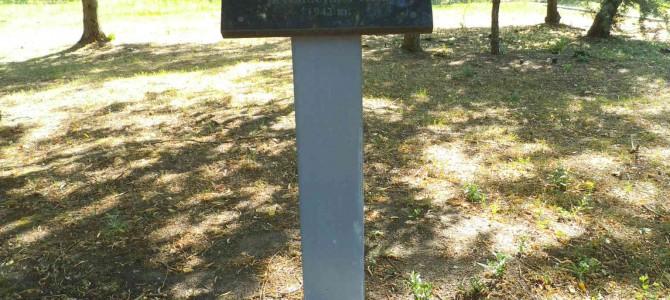 Alytuje pagerbtas 1941 m. karo pradžios aukų atminimas